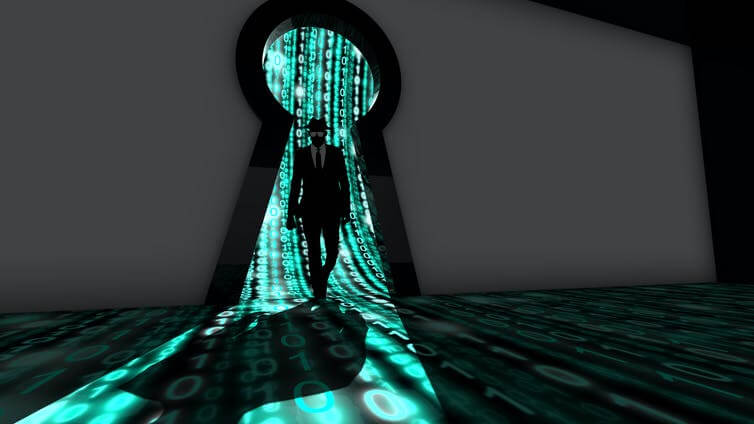 What are software vulnerabilities, and why are there so many of them?
